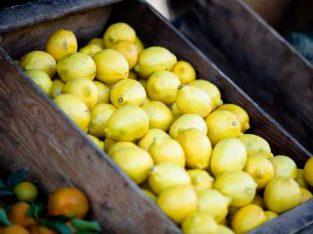 Lemon imported quality baag theky per dena hey 2 ya 5 saal k lye
