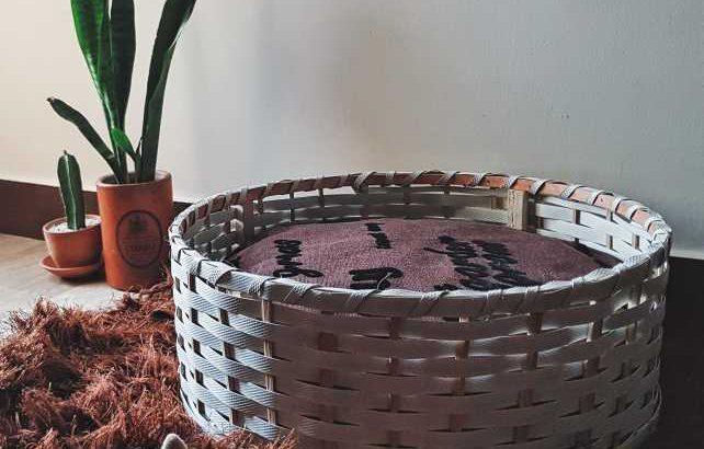 Cat Bed Basket