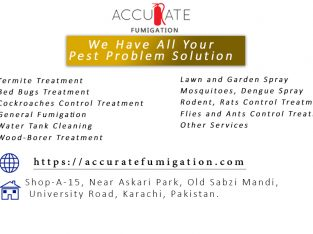 Accurate Fumigation Service Karachi, Pest Control