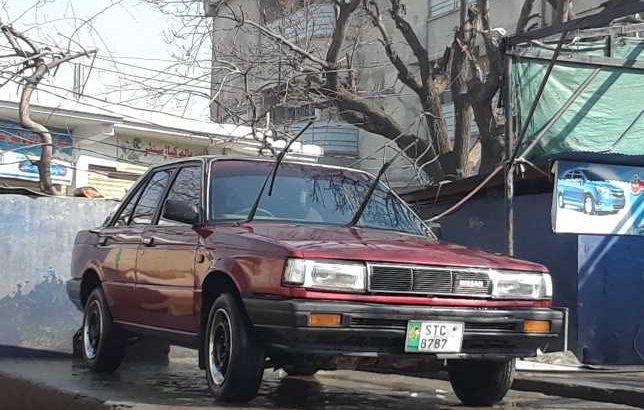 sunny nissan car
